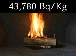 43,780 Bq/kg from firewood ash