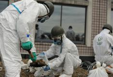 Decontamination in Fukushima