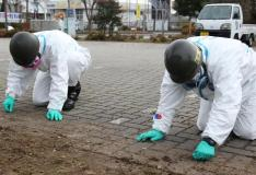 Decontamination of Fukushima
