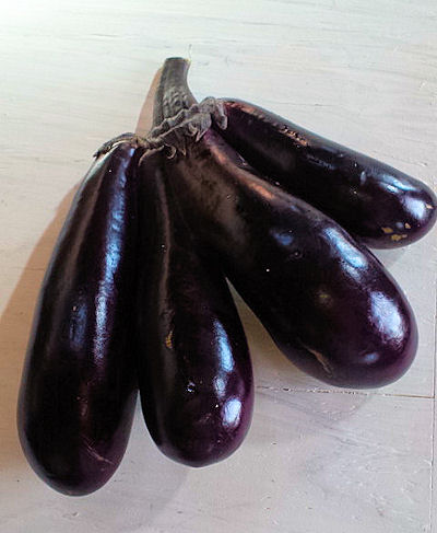 Mutated eggplants connected like conjoint twins