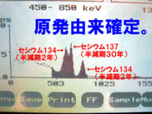 3128 Bq/kg of cesium from Ibaraki mushroom3