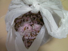 235 Bq/Kg from cherry blossom in Tokyo