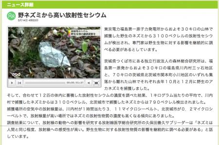 3,100Bq/Kg from field mouse in Kawauchi mura Fukushima