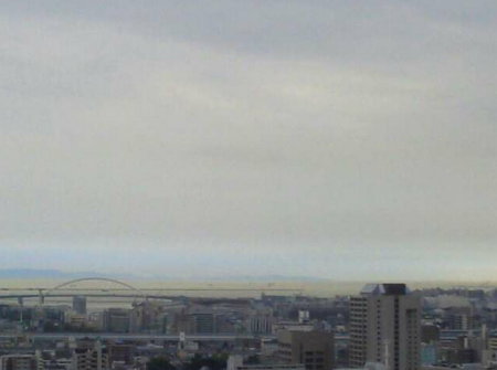 Osaka bay turned to be yellow