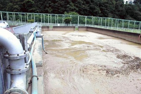 32 swallows found dead at the water purification plant in Nagano 3