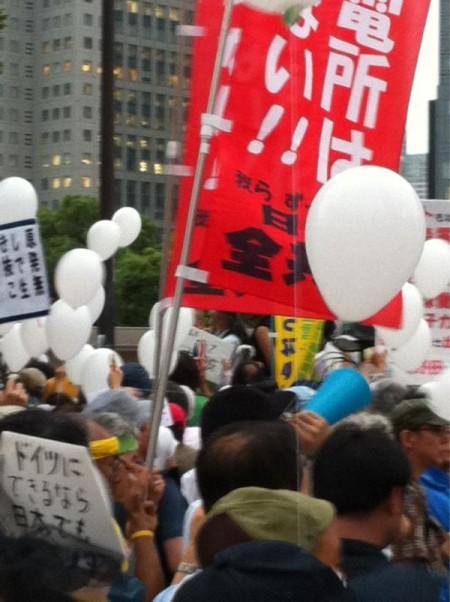 Ajisai revolution 29