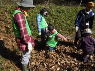 2 138 Bq/Kg from dead leaves of Kamakura central park in November 2011