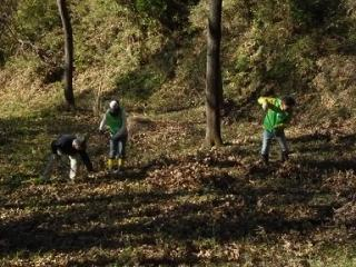 138 Bq/Kg from dead leaves of Kamakura central park in November 2011