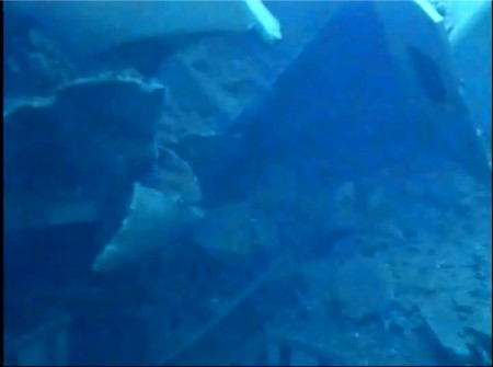 Photos and videos of Tepco's SFP investigation in reactor3