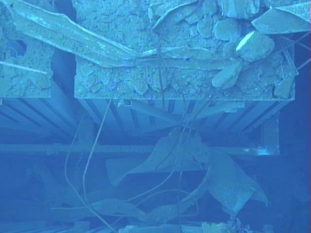 2 Photos and videos of Tepco's SFP investigation in reactor3
