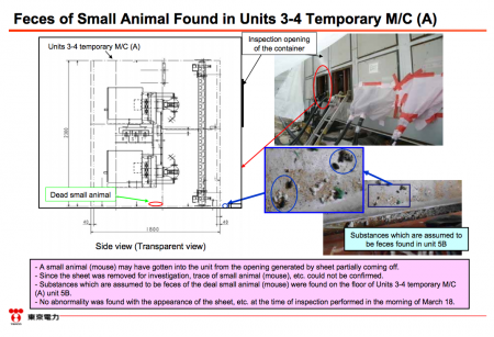 """11 [Power stoppage] Tepco sounds serious, """"Electric shock mark was found on the dead mouse"""""""