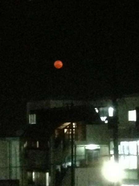 "[Express] ""The moon looks so red in Okinawa"""
