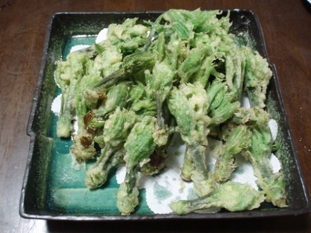 [Over double as safety limit] 210 Bq/Kg from edible wild plants in Tochigi, 102 km from Fukushima nuclear plant