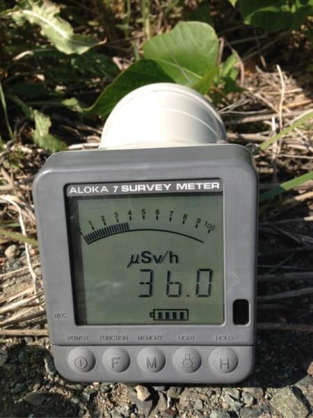 "[Express] ""36 μSv/h in Ohkuma-machi Fukushima"""