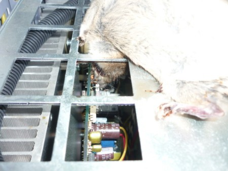2 [Again] Charger panel in Fukushima Daini disordered due to a rat