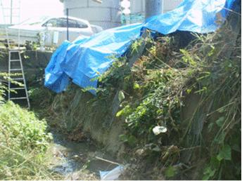 [Photo] So-called U-shaped gutter where the leaked water flowed looks like a natural stream