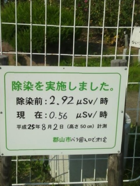 [Express] 3 μSv/h before decontamination in Kohriyama city on 8/2/2013