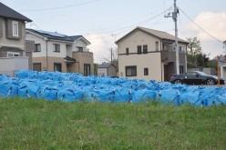 Decontamination soil bags are already starting to be torn in Fukushima