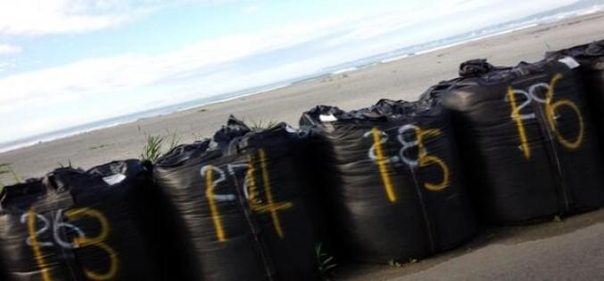 "Fukushima citizen posted ""Tsunami seawall in Fukushima prefecture is only sandbags"" – Photo"