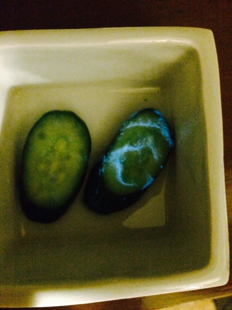 Cucumber found glowing in blue near Fukushima - Photos