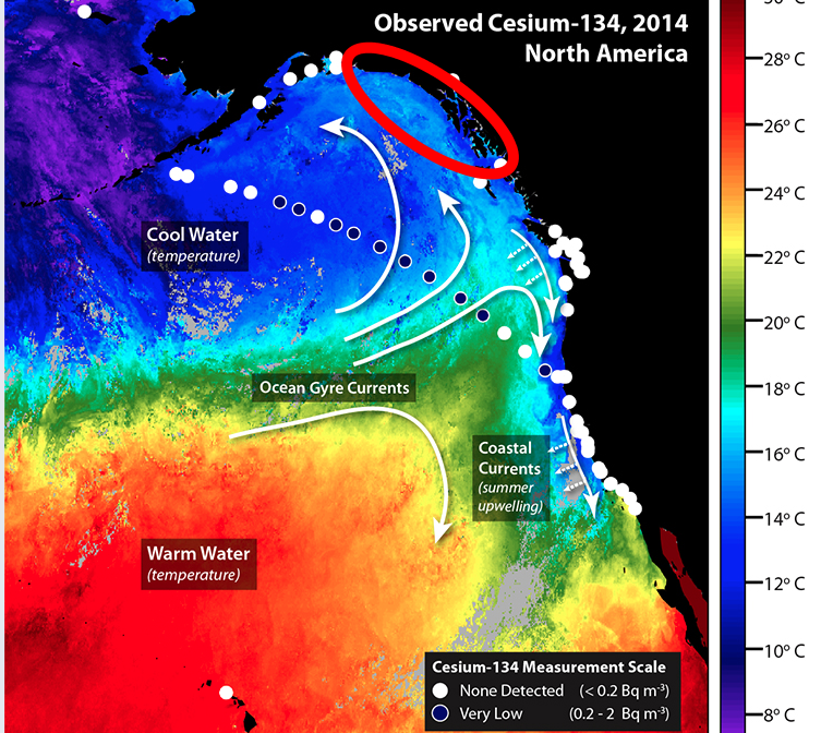 US institution Very low level of contaminant from Fukushima detected in West coast: Large areas left untested