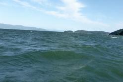 Diastrophism under Lake Biwa is ongoing