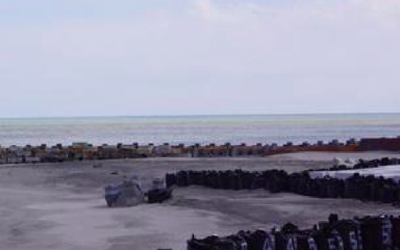 "[Photo] Fukushima citizen ""Fukushima offshore looked like a mixed ink of green, yellow and reddish brown"""
