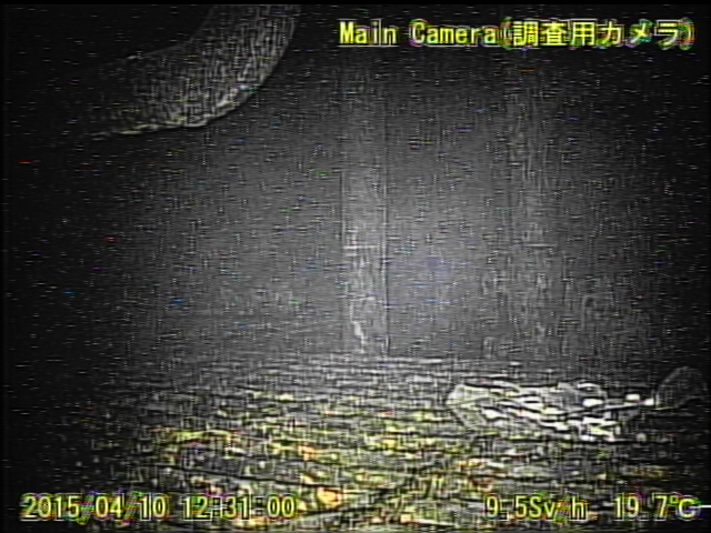 8 Video:Photo The dead robot reported 10 Sv:h in Reactor 1 : Grating covered with something like yellow glue