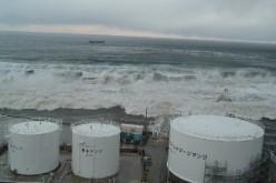 "Fukushima Uni ""800,000,000,000,000 Bq of Cs-137 to reach West coast of North America by 2016″"