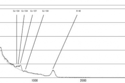 Over 80 Bq/Kg of Cesium-137 detected from vacuum cleaner dust used since this Spring in Tokyo