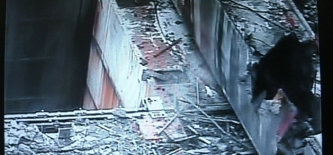 Tepco completed removing 20 t debris from SFP 3