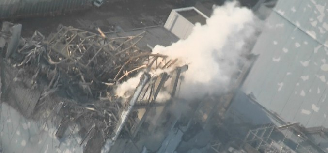Tepco has analyzed only 5 samples of fish for Sr-90 outside Fukushima port in the first quarter of 2015