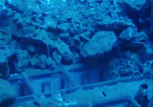 2 Photo Tepco reported 2 fuel assemblies have the handles deformed in pool of Reactor 3