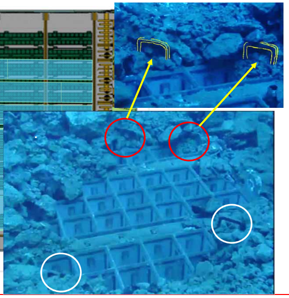 3 Photo Tepco reported 2 fuel assemblies have the handles deformed in pool of Reactor 3