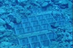 [Photo] Tepco reported 2 fuel assemblies have the handles deformed in pool of Reactor 3