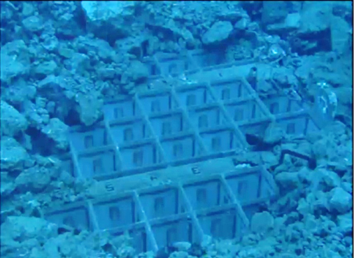Photo Tepco reported 2 fuel assemblies have the handles deformed in pool of Reactor 3