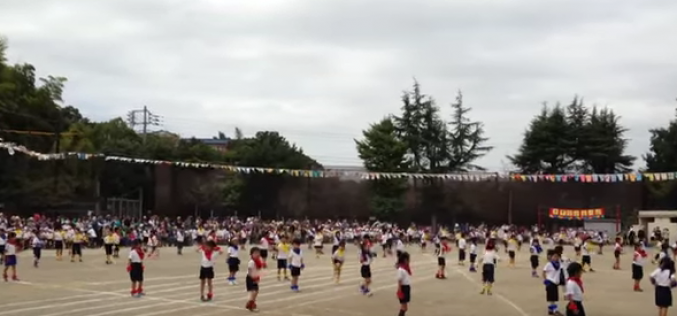 171 Bq/Kg from a school playground sand in Kamakura city / Jumped up over 6 times as last year