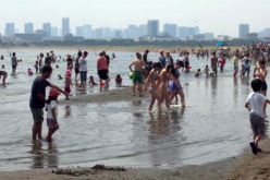 Ministry of Land not disclosing water quality data of Tokyo bay for 2 months