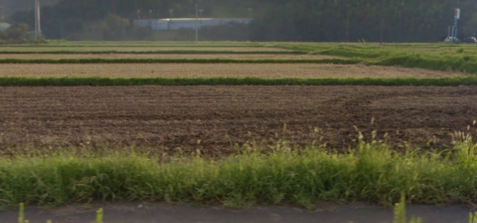 45 Bq/Kg of Cs-134/137 detected from farm soil in Chiba prefecture