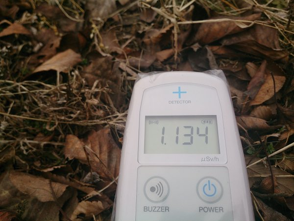 2 Photo Still over 1 μSv:h measured beside a rice field in Tochigi