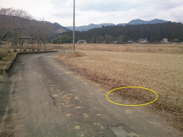 3 Photo Still over 1 μSv:h measured beside a rice field in Tochigi