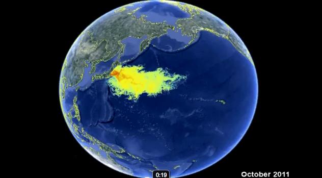 marine contamination8
