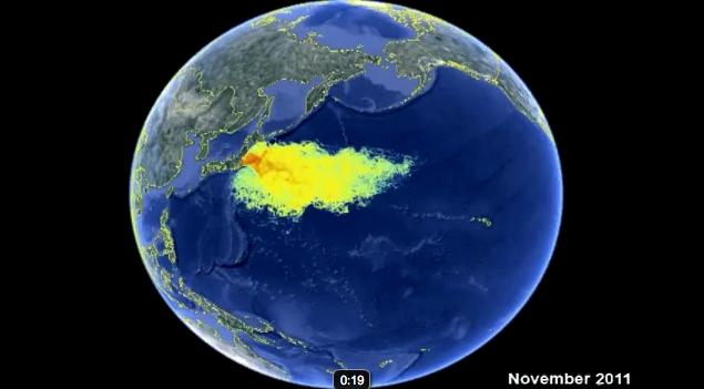 marine contamination9