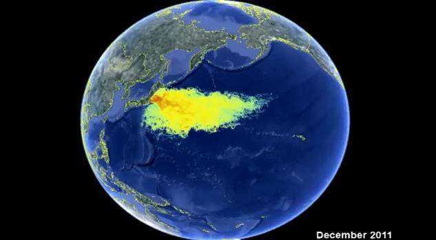 marine contamination10