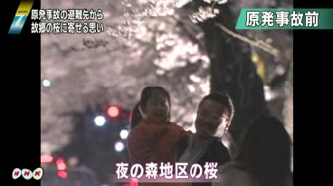 Good bye cherry blossom2