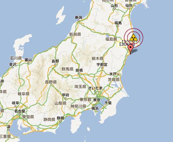 Plutonium measured from fish offshore Fukushima