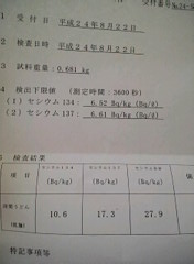 "28 Bq/Kg from Udon, ""contaminated wheat"""