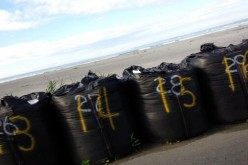 "Fukushima citizen posted ""Tsunami seawall in Fukushima prefecture is only sandbags"" – Photo"