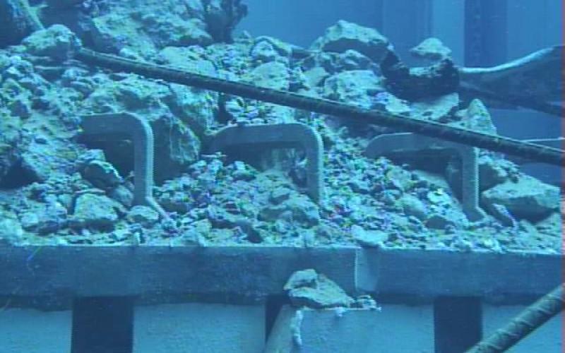 "Tepco ""found"" 8 more fuel assemblies under the fallen debris in Reactor 3 pool"