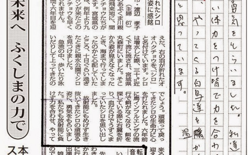 """Fukushima local newspaper removed the part """"Fight nuclear policy"""" from reader's contribution article"""